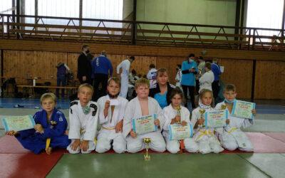 XIV. ročník Jarního turnaje Judo v Nepomuku